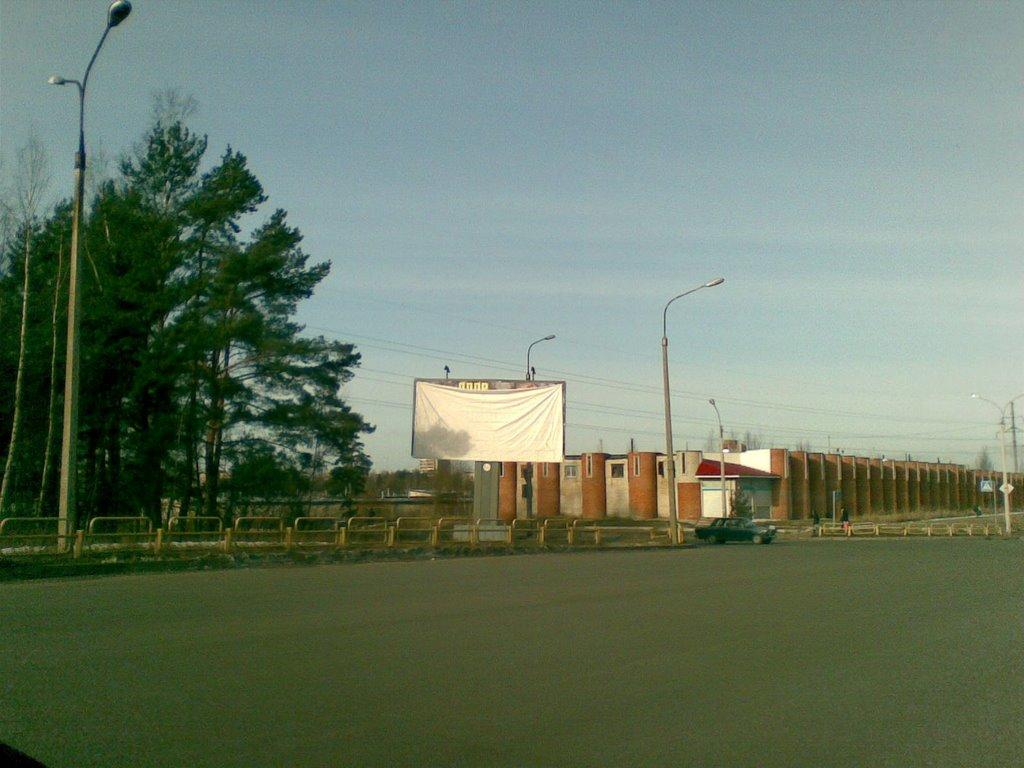 Elections 2008, Сосновый Бор
