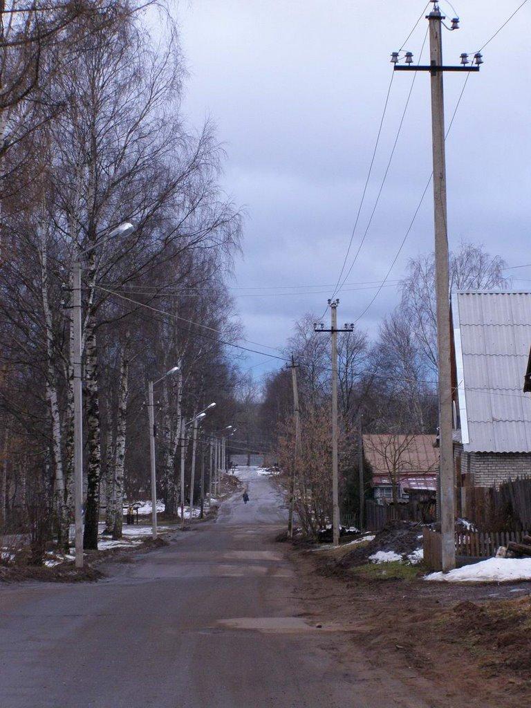 вид на улицу Ильинскую, Тихвин