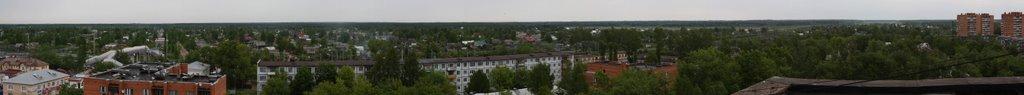 Тосно, частный сектор, вид с 9-го этажа, Тосно