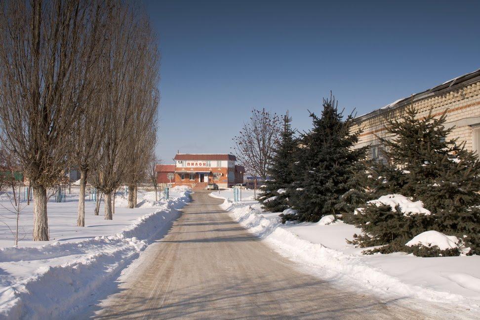 дорога, Ивантеевка