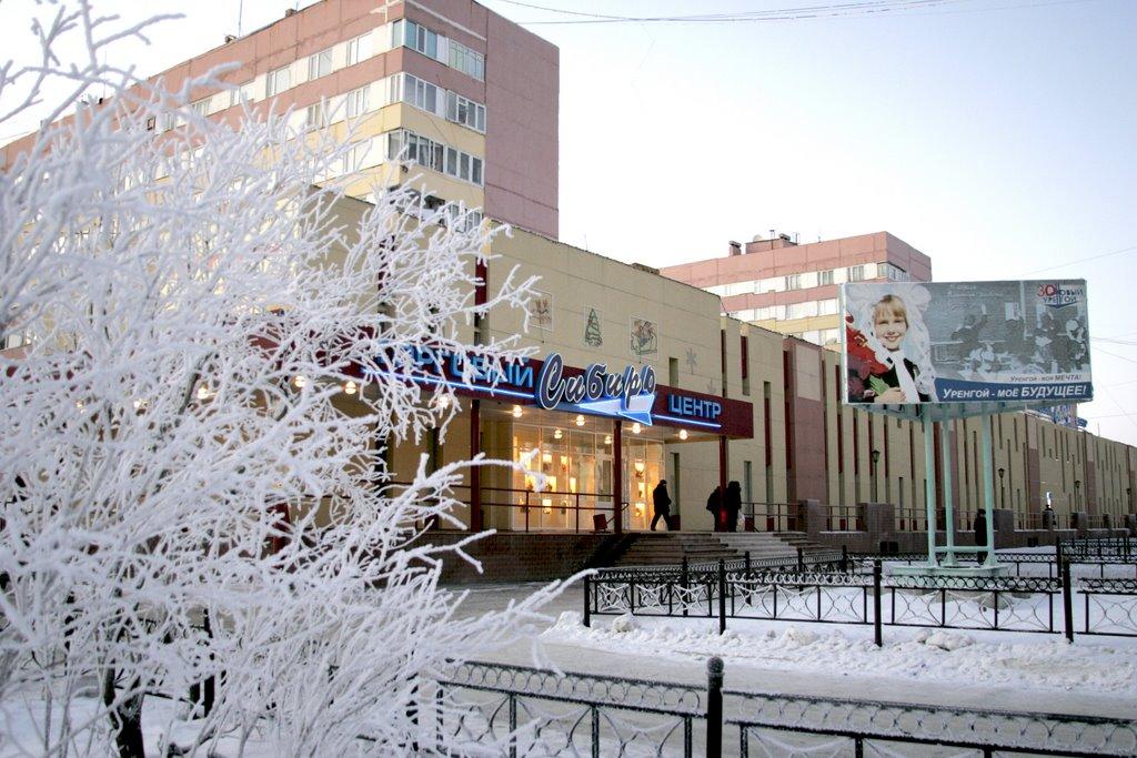 Новый Уренгой. Ноябрь 2008. Уже зима., Новый Уренгой