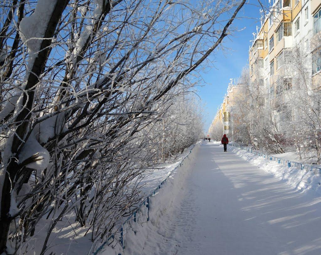 Муравленко февраль 2013, Муравленко
