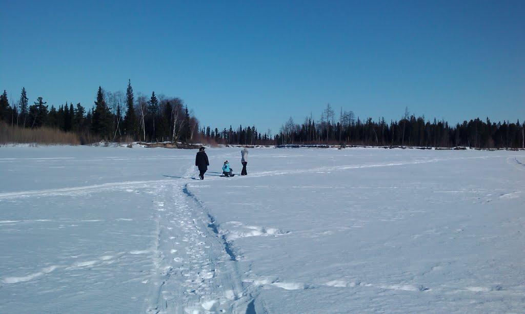 Пяку-Пур зимой 3, Губкинский