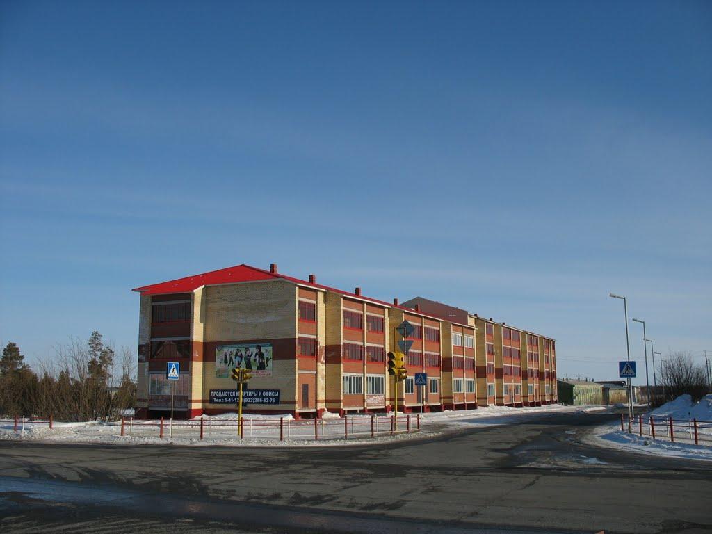 Новые дома в 15-ом микрорайоне, Губкинский