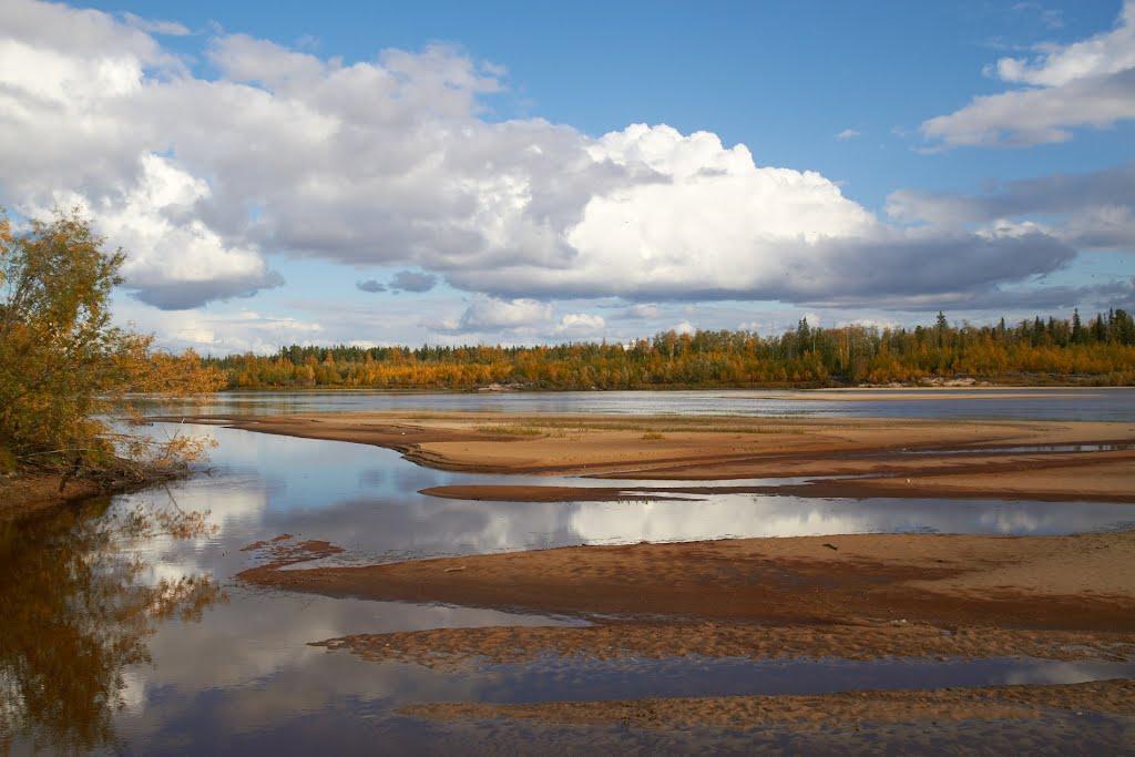 река, Губкинский