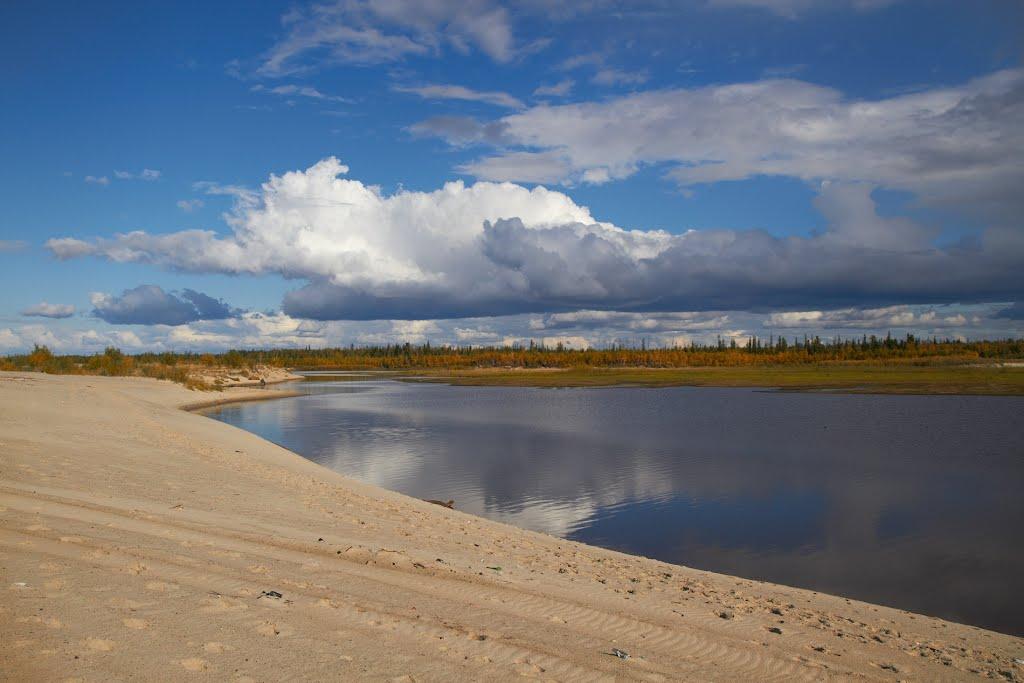 пляж, Губкинский