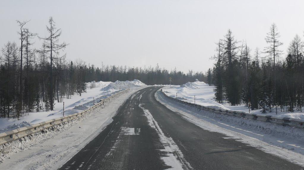 март 2014, Пуровск