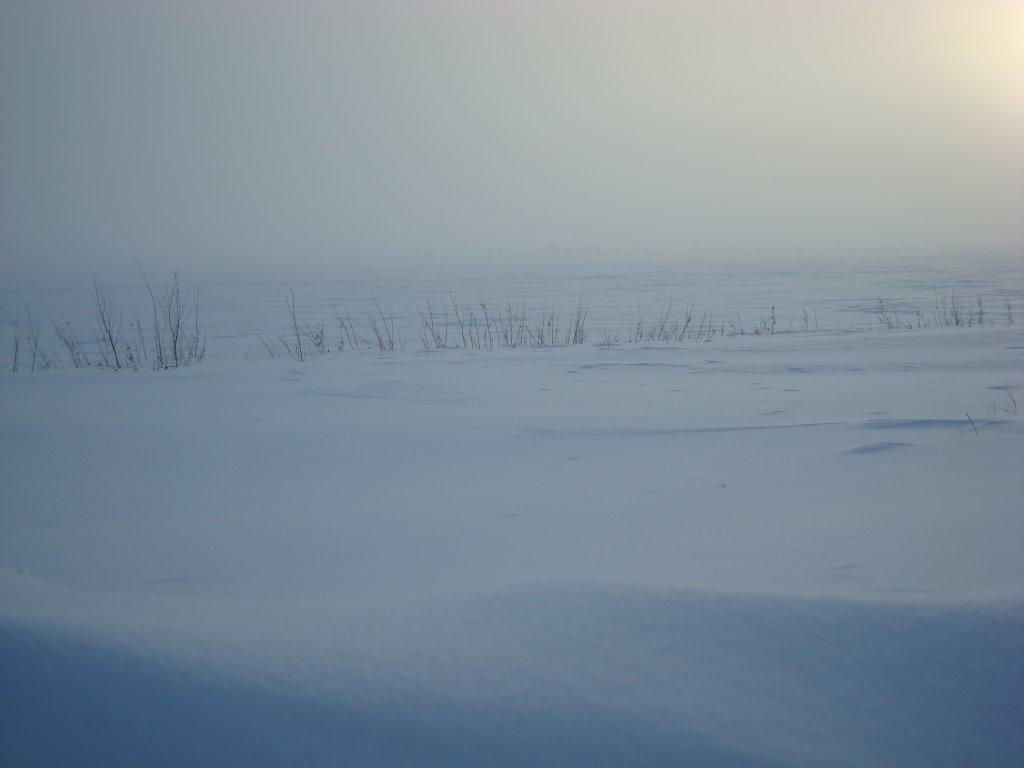 озеро -44 с, Надым