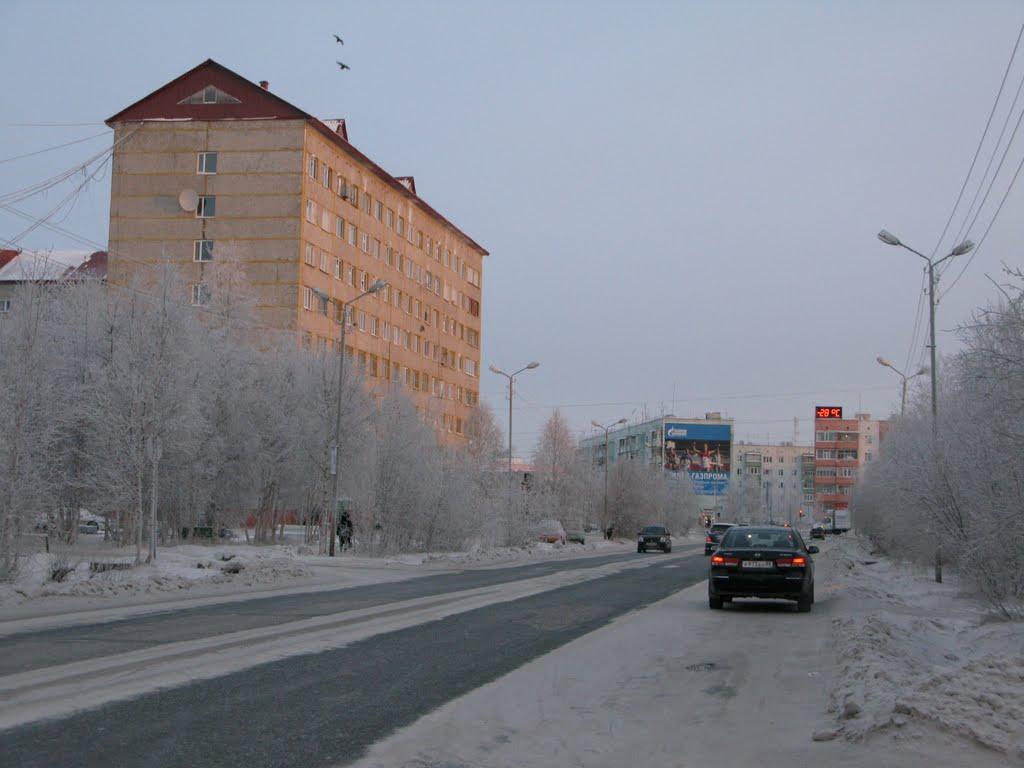 ► Вороны над Общежитием.    *, Ноябрьск