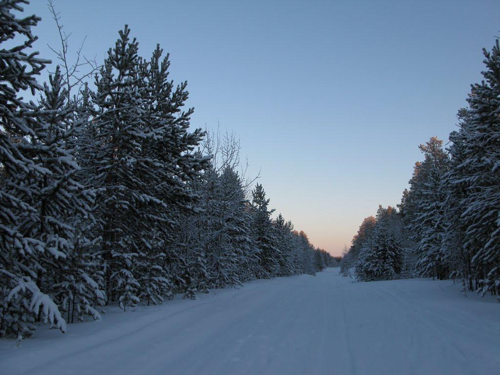 ► На лыжи и вперёд.   *, Ноябрьск