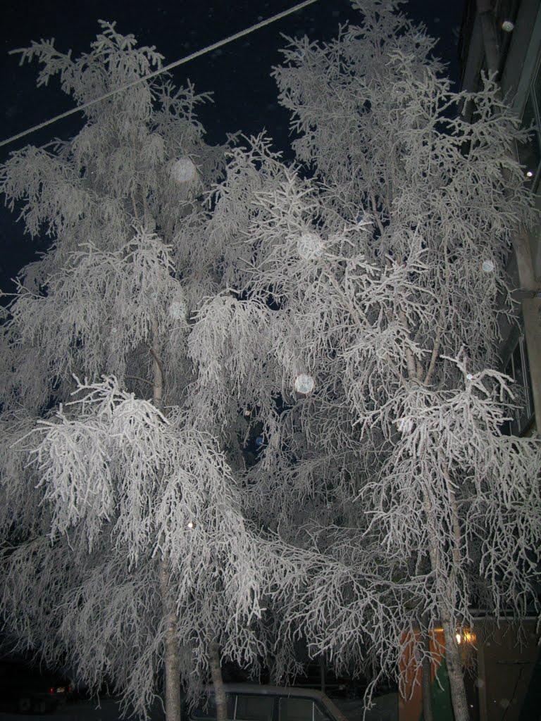 ►  Кружево зимы.   *, Ноябрьск