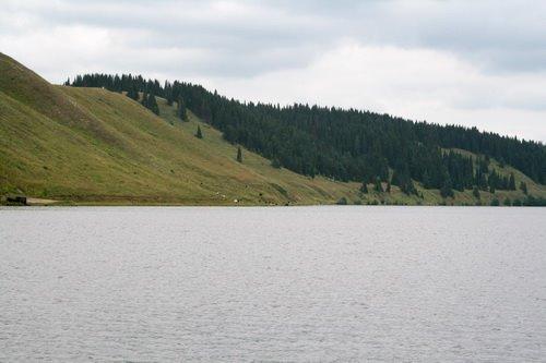 Михайловский пруд, Михайловск