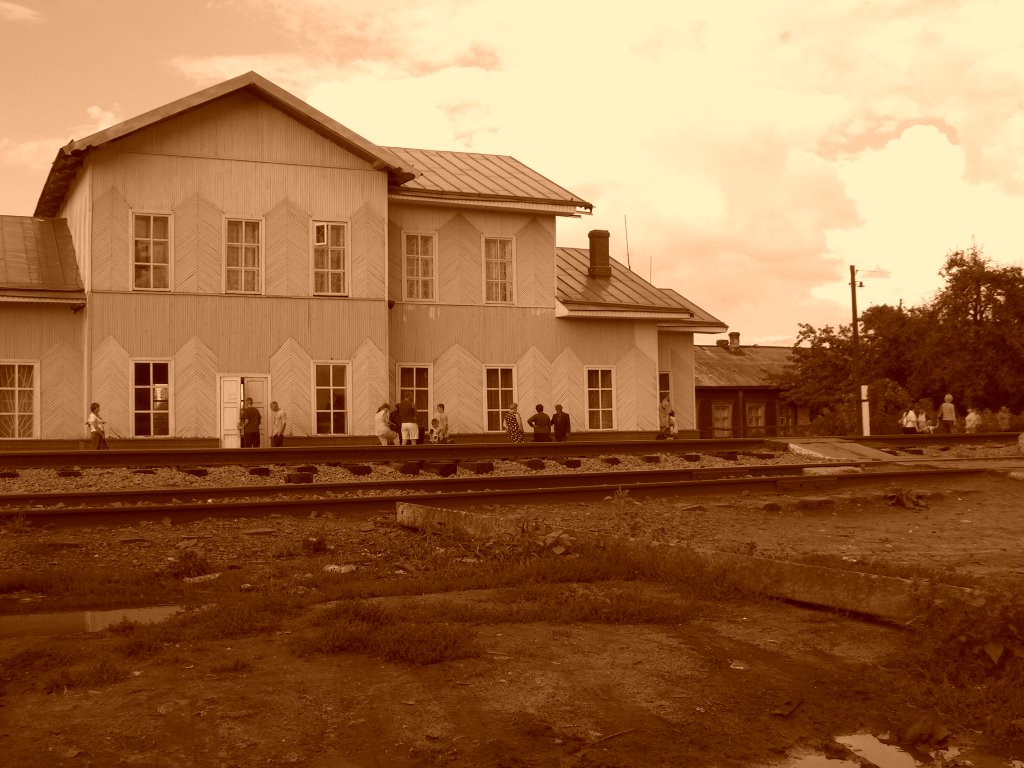ж/д станция Токаревка, Токаревка