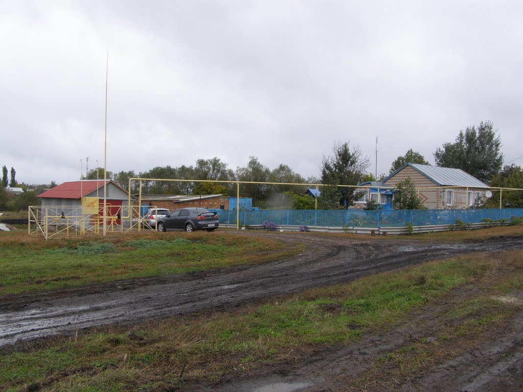 Дом, Токаревка