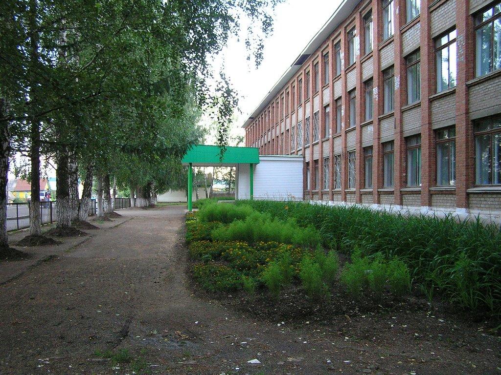 Общеобразовательная школа №2 г.Агрыз. бывшая №74, Агрыз