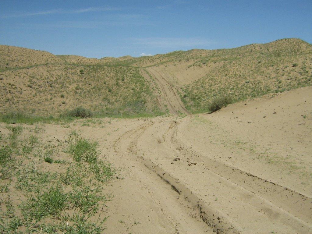 Sand dune Boorog del, Самагалтай
