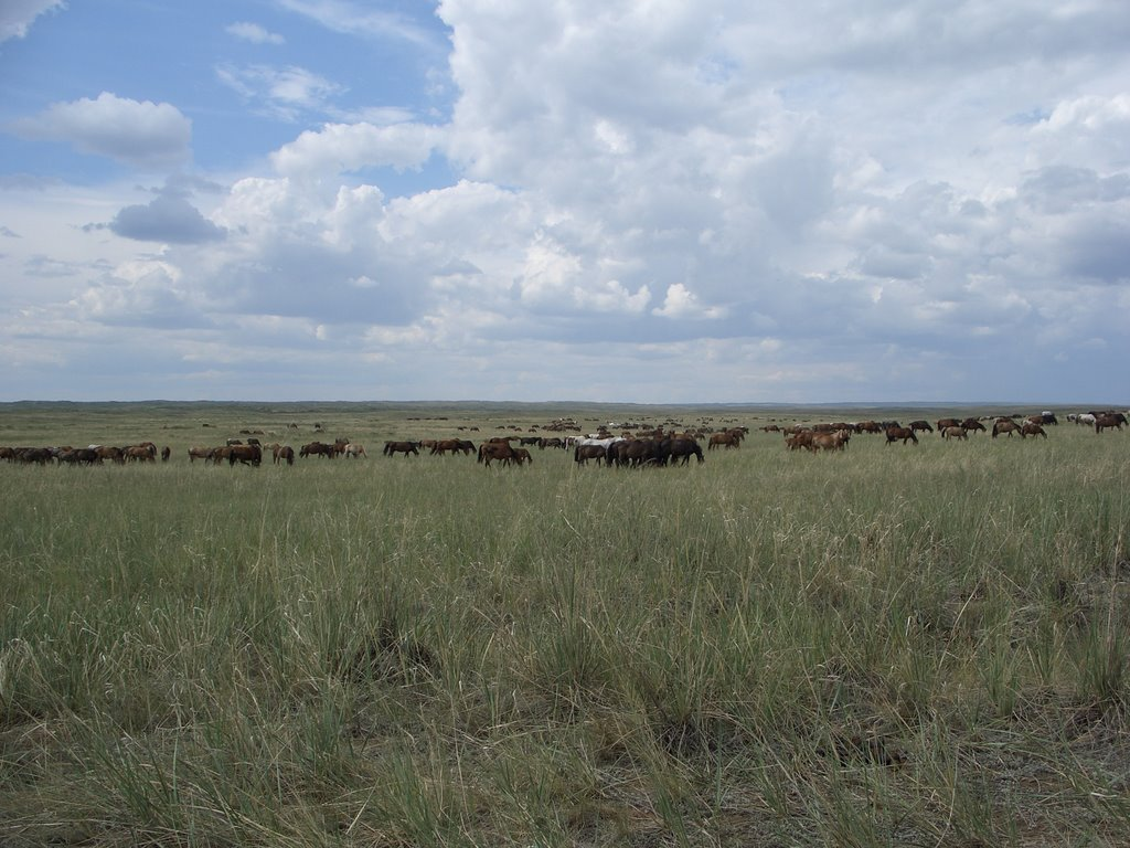 Тувинская степь, Самагалтай