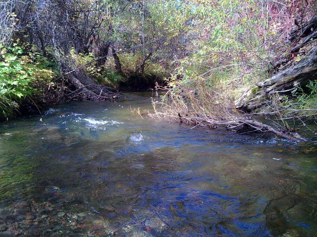 река Мерген в сентябре, Сарыг-Сеп