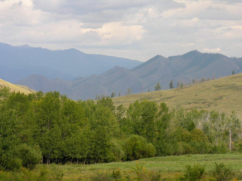 View to Dongul-Taiga mountain range from M54 road, Суть-Холь