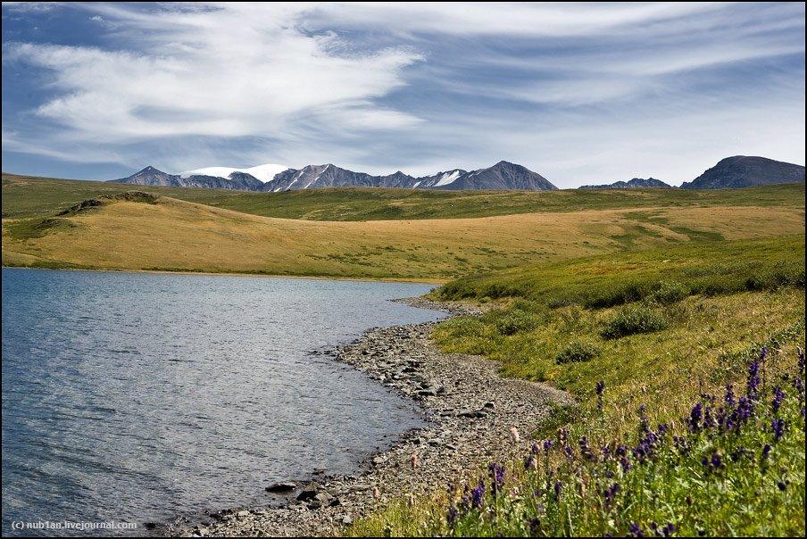 оз.Хиндиктиг-Холь, вид на г.Монгун-Тайга, 3970 м, Тээли