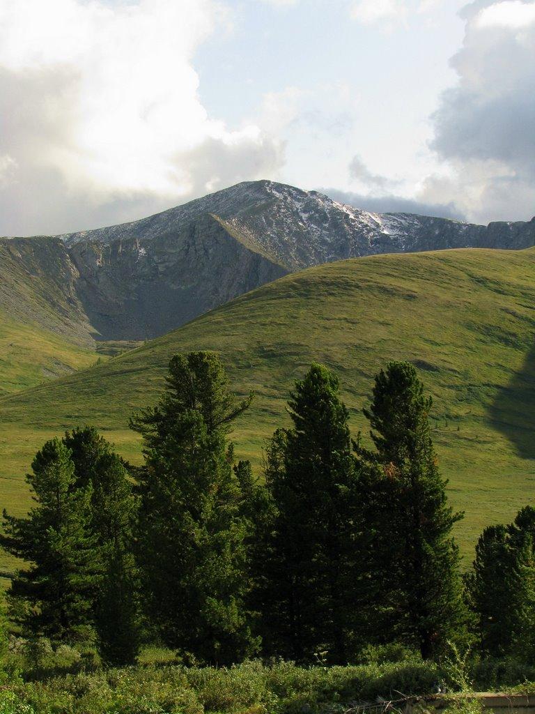 Возле перевала Куру-Куль (август 2009г.), Тээли