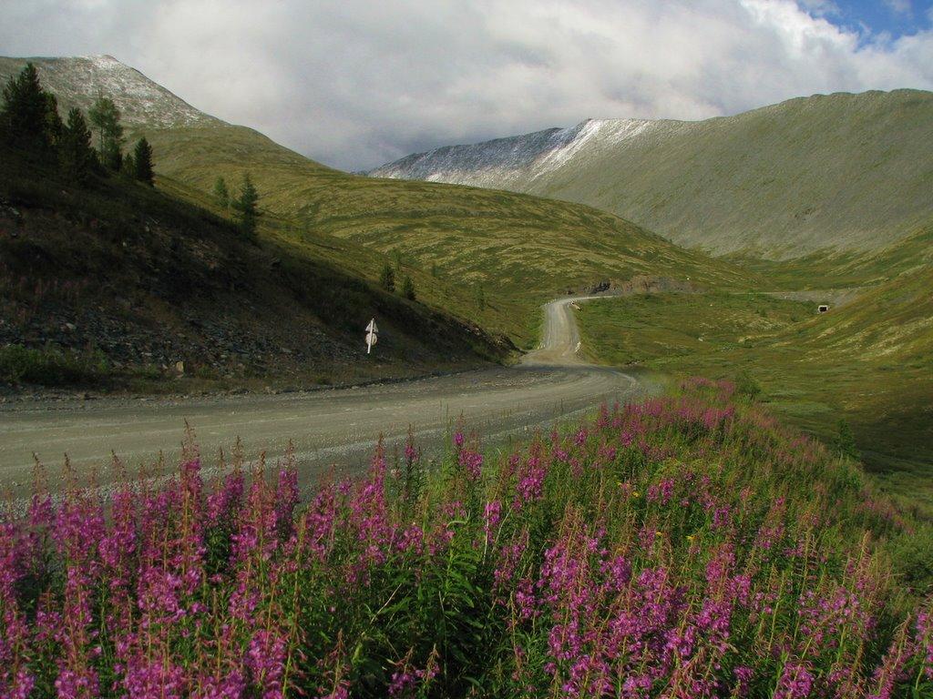 Трасса А161 и подъем на перевал Куру-Куль (август 2009г.), Тээли