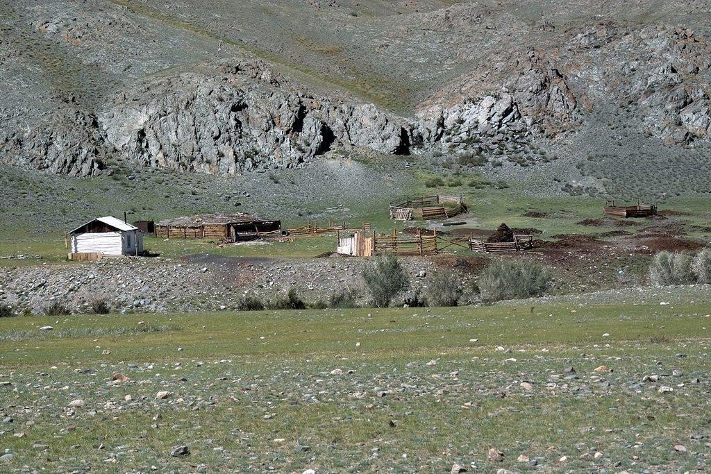 кошара на левом берегу, Тээли