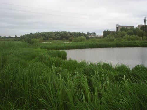 под горкой, Ялуторовск