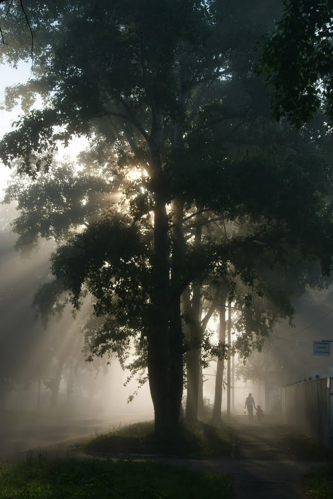Туман туман туман... (mist), Николаевск-на-Амуре