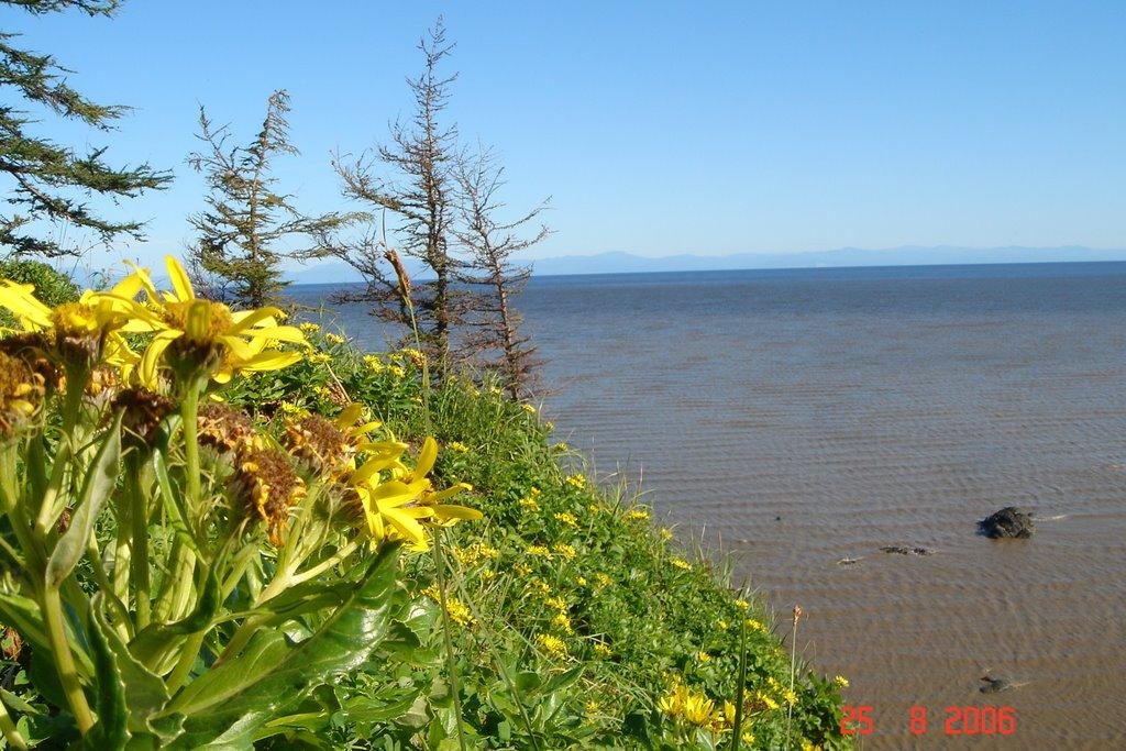 Тугурский залив, отлив, Тугур