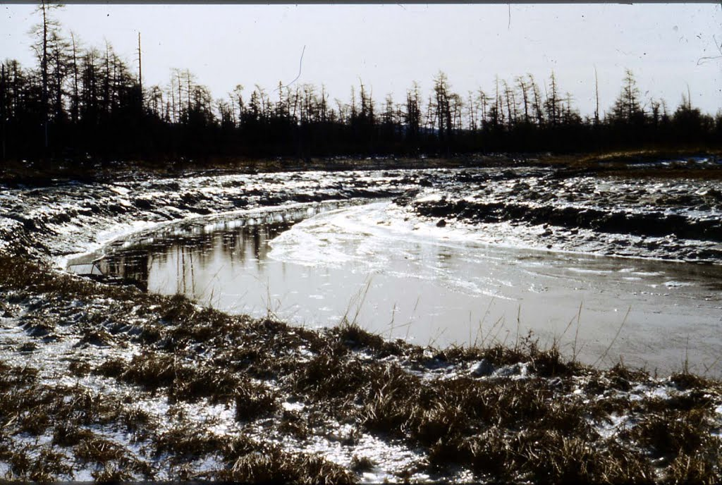 Icy river after night frost..., Тугур