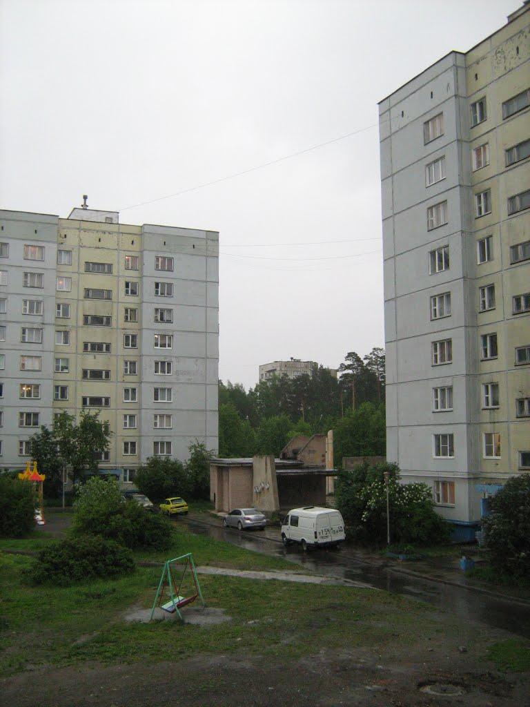 Три поросенка!, Снежинск
