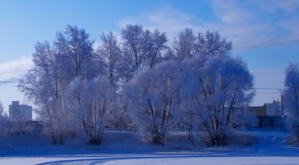 Winter picture, Озерск