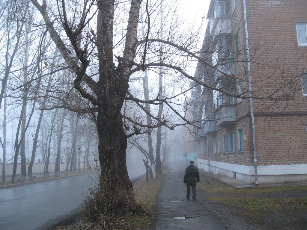 ул. Титова, Бакал