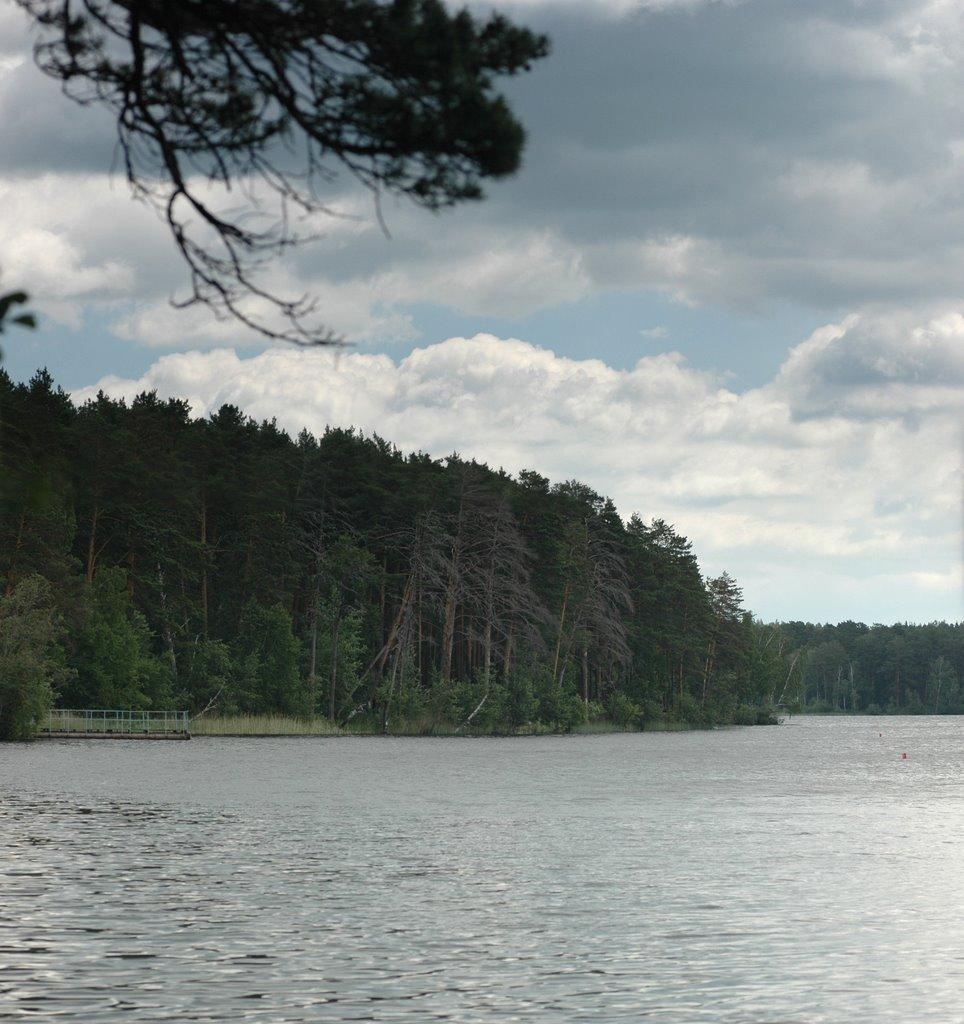 Озеро Большой Еланчик / Lake Bolshoy Elanchik, Бреды