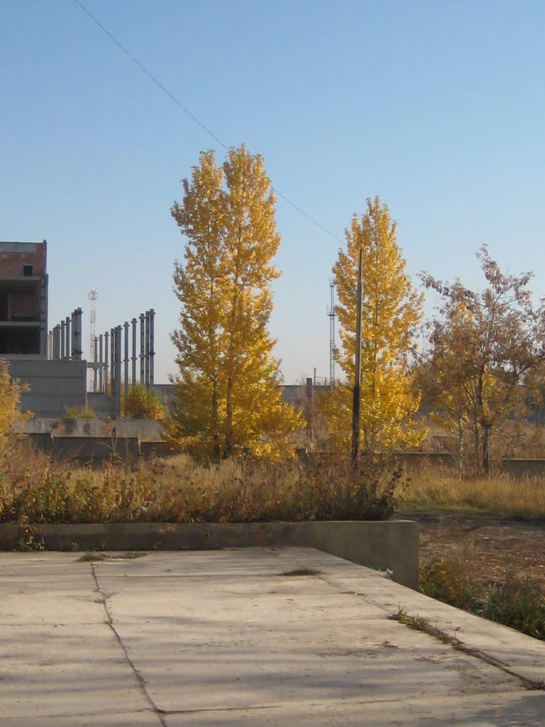 Осень, Еманжелинск