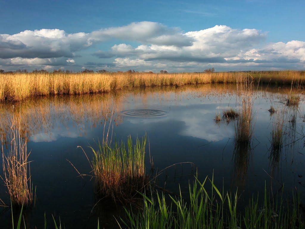 Нетронутая тишина, Еманжелинск