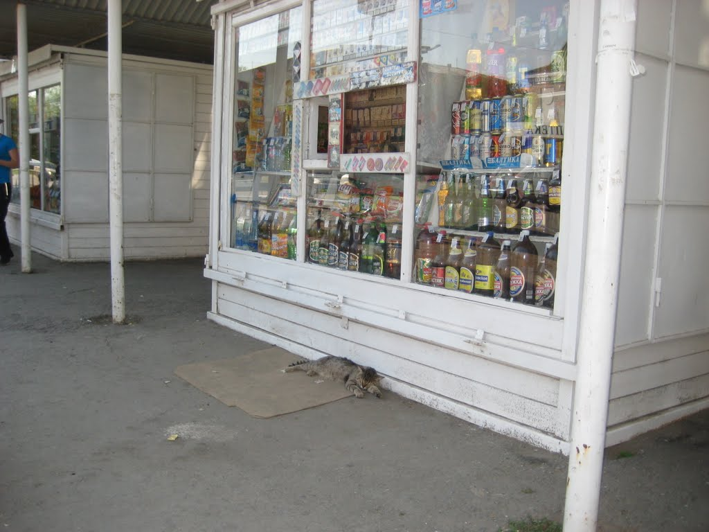 утамился, Еманжелинск
