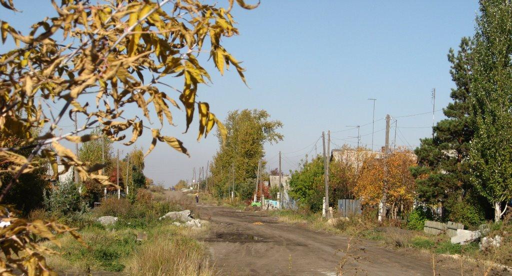 Ул. Кормильцева. Осень, Копейск