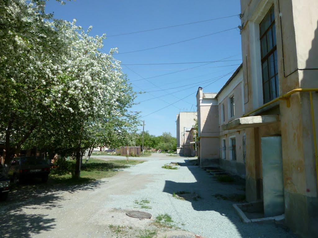 ул.Дзержинского май 2010, Коркино