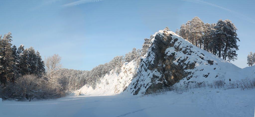 Зимний Аргус, Куса