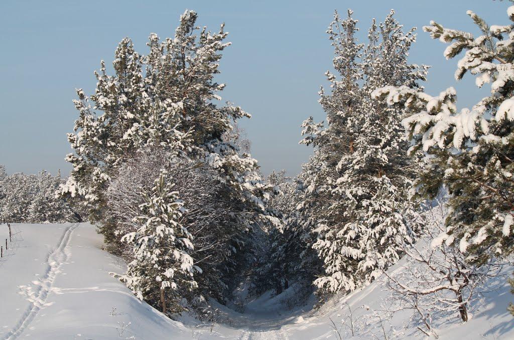 Разрез горы для железной дороги, Куса