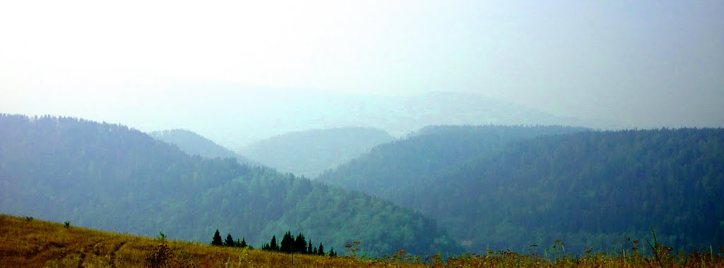 Горы на горизонте, Сим