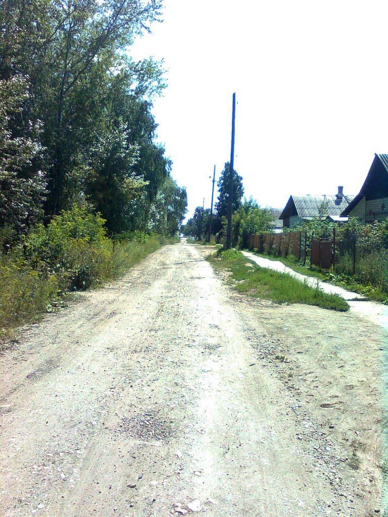 Чебаркуль улица Электростальская, Чебаркуль