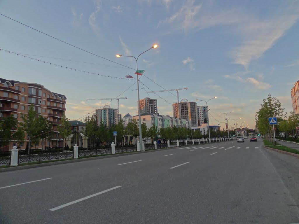2011, Россия, Республика Чечня,  Гудермесский район, Гудермез