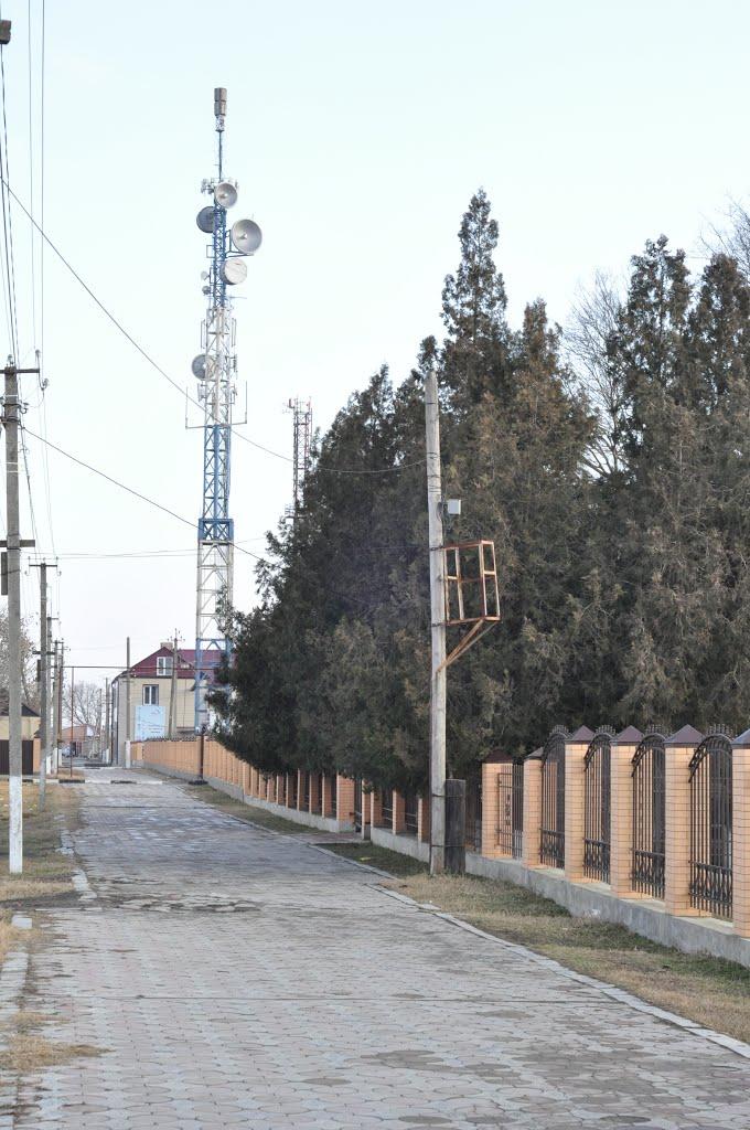 Ретранслятор, Наурская