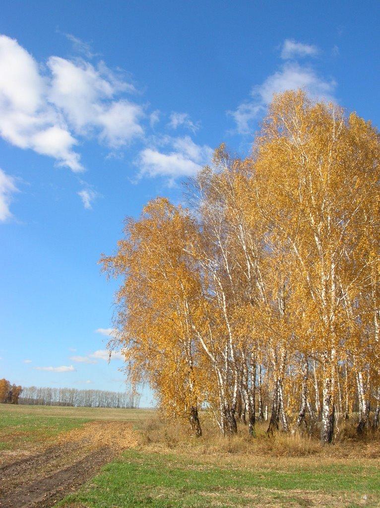 Золотая осень, Советское