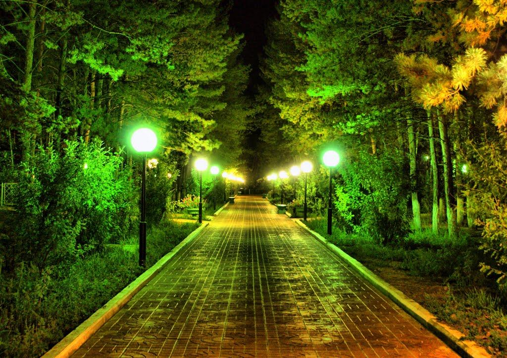 Центральная алея парка, Агинское