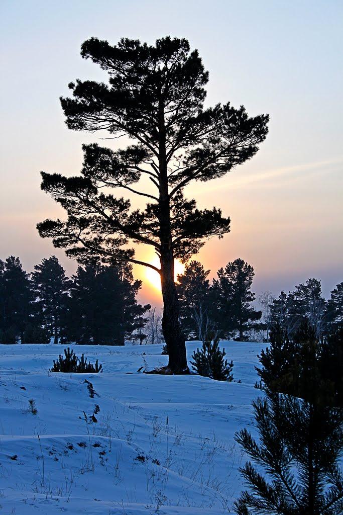 Закат в январе., Акша