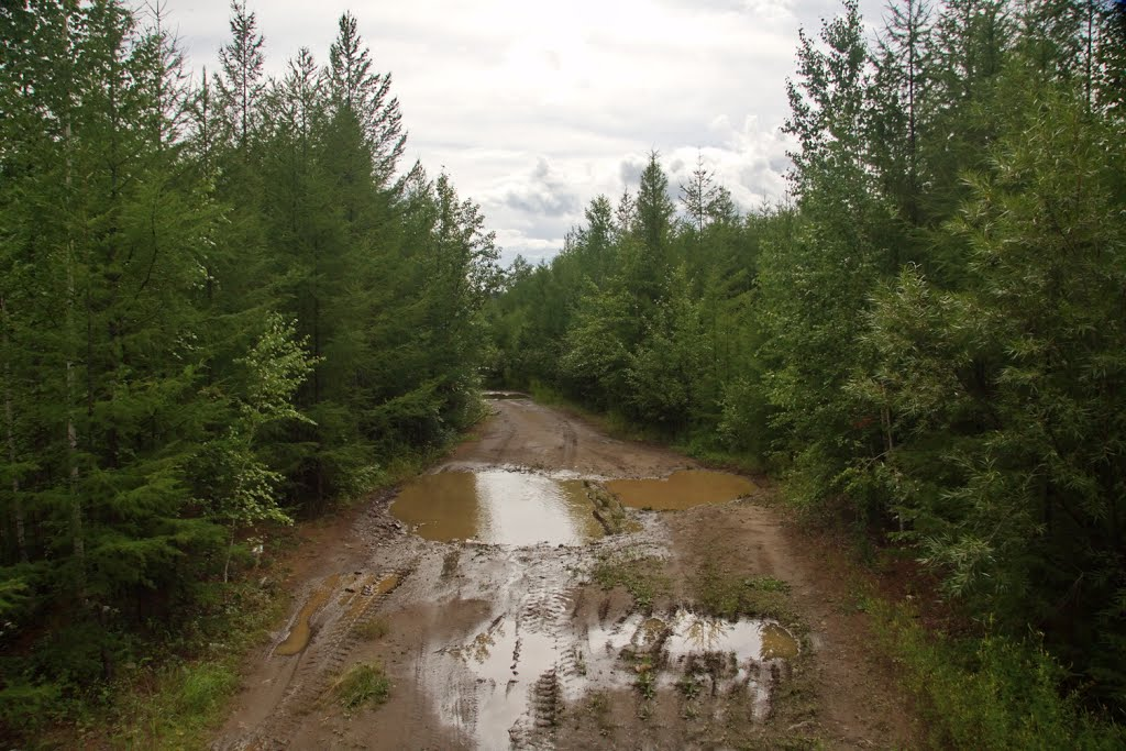 Дорога Ключевский-Соболино 18, Давенда